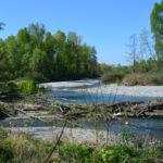 réserve naturelle de la dranse